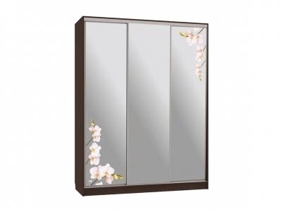Шкаф-купе Бассо 4-600 орхидеи венге